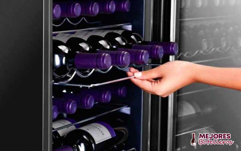 guardando botellas de vino en la vinoteca